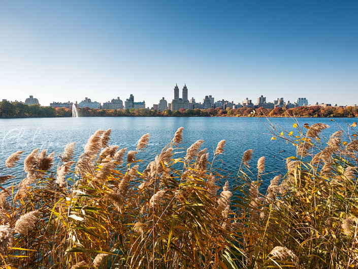 Central Park reservoir in Autumn – New York City