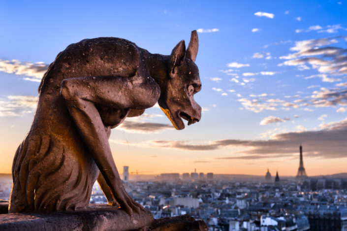 Gargoyle of Notre-dame de Paris at sunset