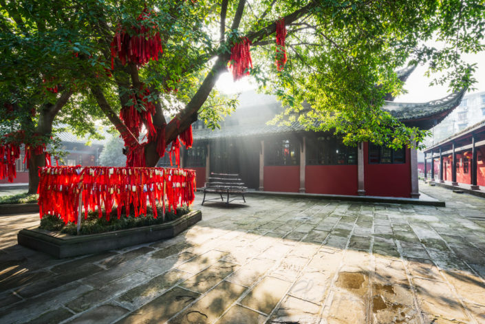 Sunrays passsing through a wish tree in Randeng Naos buddhist Temple, Luodai in the East of Chengdu, China