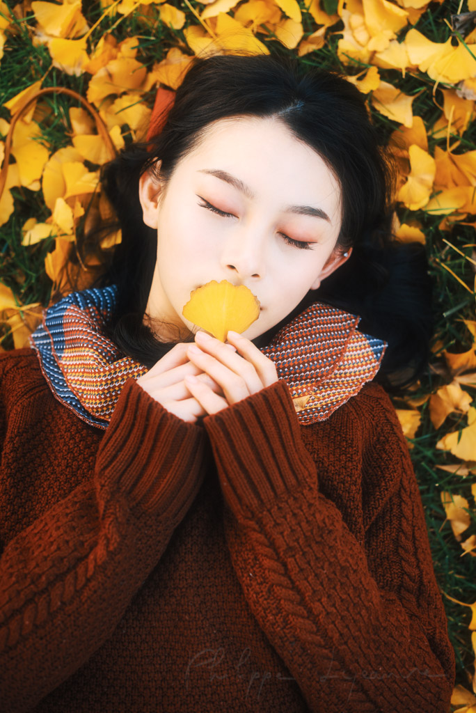 Young chinese woman wearing a red knit jumper lying on yellow gingko leaves in autumn in Chengdu, Sichuan province, China