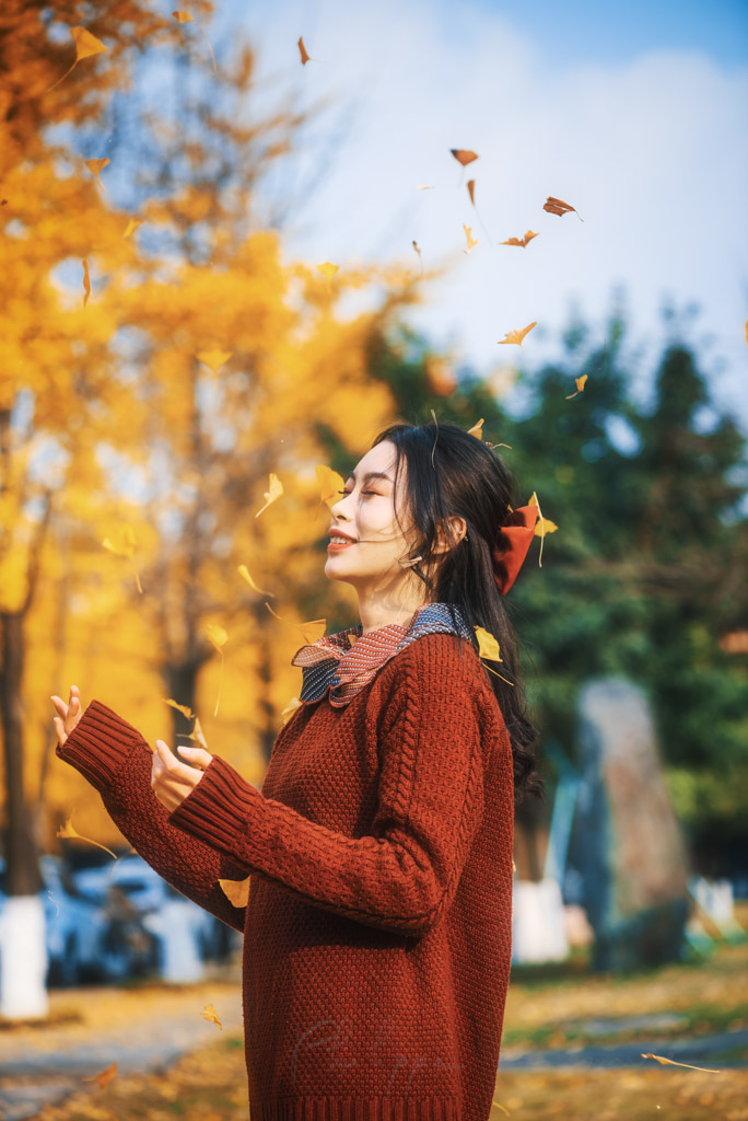 Young chinese woman wearing a red knit jumper playing with yellow gingko leaves in autumn in Chengdu, Sichuan province, China