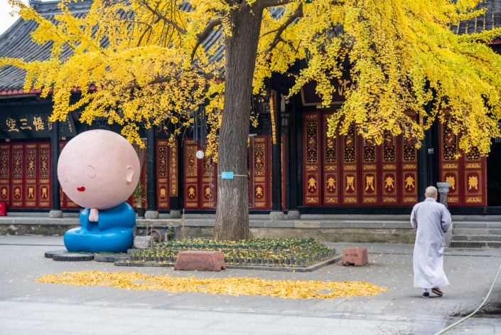 Manga monk statue and monk in DaCi buddhist temple with yellow leaves in Ginkgo trees in autumn, Chengdu, Sichuan province, China