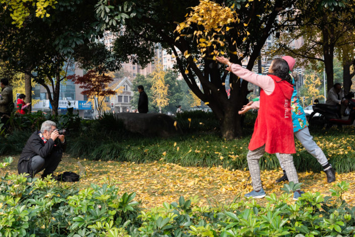 Senior man taking photos of two women throwing yellow ginkgo tree leaves by Jinjiang river in Jinli ZhongLu street in Autumn, Chengdu, Sichuan province, China